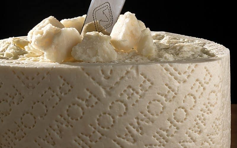 Europa rundt på 10 oste