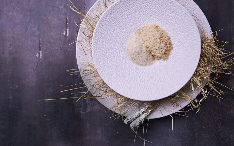 Opskrift fra Søllerød Kro: Terrin af trøffel med ostesauce og tuile