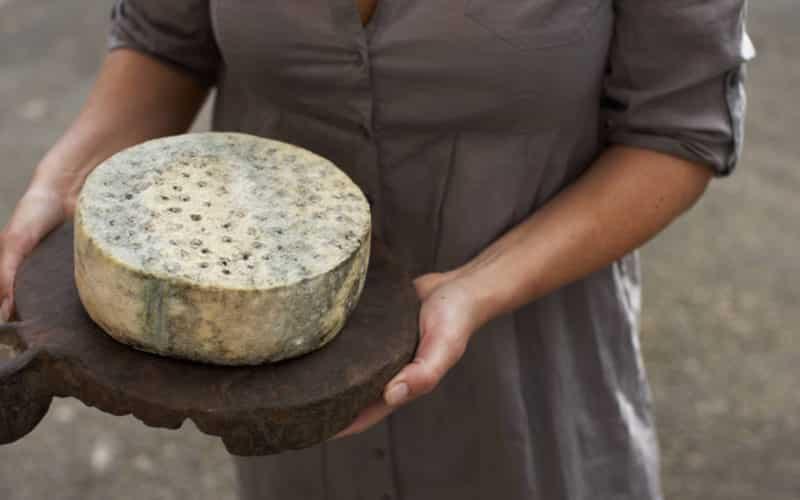 Ostenyt forår 2020: Småt og godt fra ostens verden