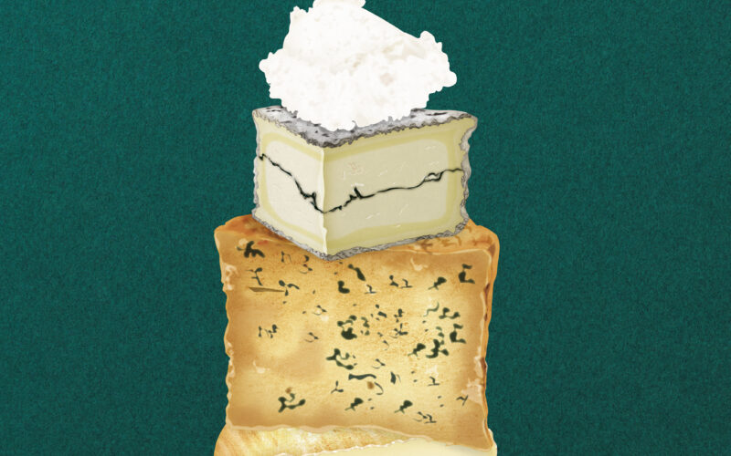 Nye og eksperimenterende oste | Her er 6 hotte oste, du skal kende