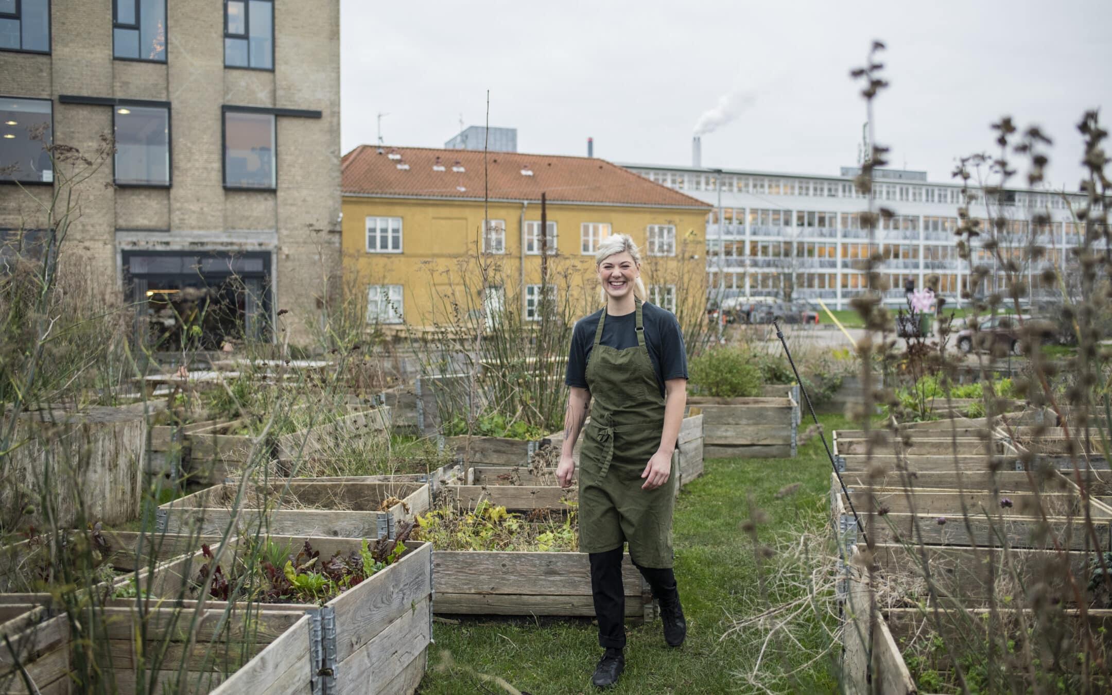 Generation Ø: Ost har en plads i fremtidens madkultur – men vi skal være opmærksomme på vores forbrug